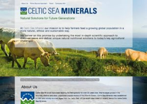 Celtic Sea Minerals website. Design and development by Kieran O'Connor Design, Cork, Ireland